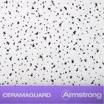 армстронг Ceramaguard